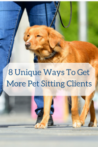 8-unique-ways-to-get-more-pet-sitting-clients