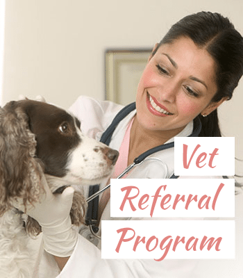 Vet-Referral-Program