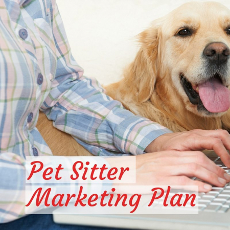 Pet SitterMarketing Plan