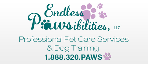 Endless Pawsibilities
