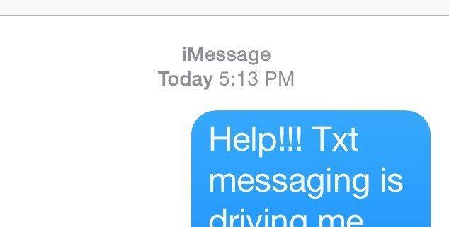 text pet sitter