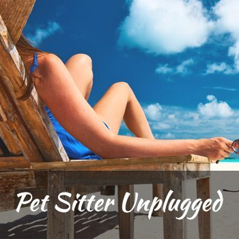 classes-pet-sitter-unplugged