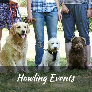 classes-howling-events