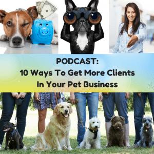 More-clients-pet-sitting-dog-walking