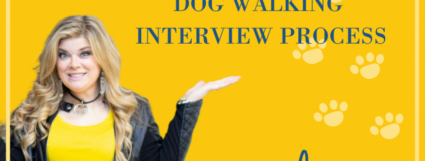 Dog walker, pet sitter, blog, business blog, hiring, recruitment, new staff, interviews, business coach