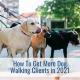 How to get more dog walking clients in 2021